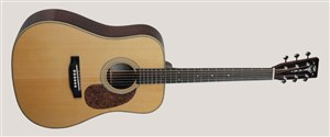 Recording King RD-126-FE2 Electro-Acoustic Dreadnought Guitar