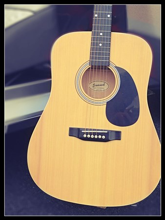 Savannah Dreadnought Acoustic SG-615-NA- Image 1