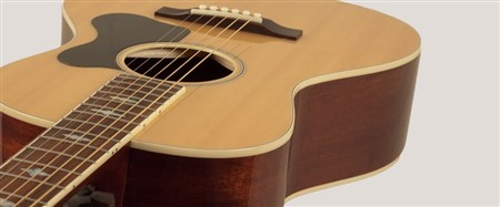 Recording King RNJ-26-NA Acoustic Guitar (Century Jubilee Series)- Image 3