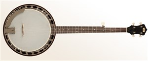 Recording King RK-R15-BR Resonator Banjo