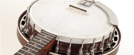 Recording King RK-R15-BR Resonator Banjo- Image 4