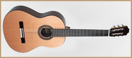 Francisco Domingo FG-27 Classic Guitar, Rosewood