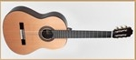 Francisco Domingo FG-27 Classic Guitar, Rosewood- Image 2