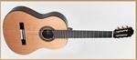 Francisco Domingo FG-27 Classic Guitar, Rosewood