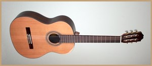 Francisco Domingo FG-17 Francisco Domingo Classic Guitar, Rosewood
