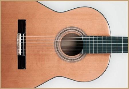 Francisco Domingo FG-17 Francisco Domingo Classic Guitar, Rosewood- Image 4