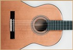 Francisco Domingo FG-17 Francisco Domingo Classic Guitar, Rosewood- Image 4
