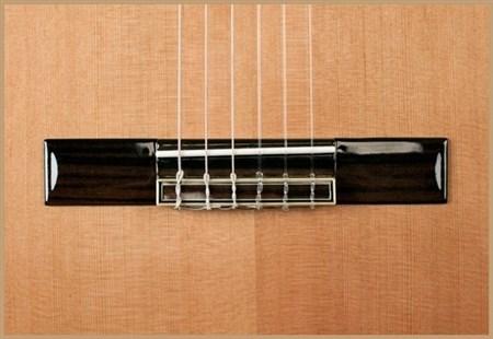 Francisco Domingo FG-17 Francisco Domingo Classic Guitar, Rosewood- Image 1