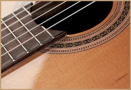 Francisco Domingo FG-17 Francisco Domingo Classic Guitar, Rosewood- Image 5