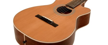 Recording King O Style Cutaway Guitar, ThermoCure Top RP1-16C- Image 3
