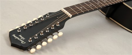 Recording King RDH-05-12 Solid Top Dreadnought 12 String Guitar- Image 1
