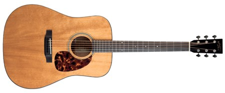 Recording King RD-T16-PG Torrefied Top Dreadnought