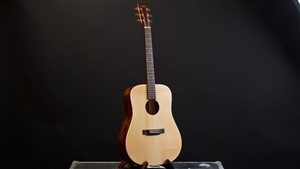 Recording King EZTone RD-A9M All Solid Dreadnought