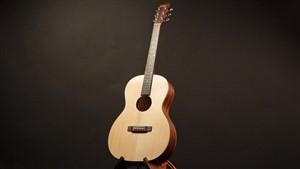 Recording King EZTone ROS-A9M All Solid 12 Fret 000 Guitar
