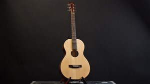 Recording King EZTone RP-A9M All Solid Parlour Guitar
