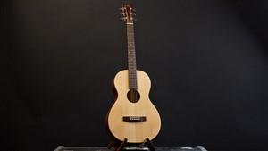 Recording King EZTone RP-A9M All Solid Parlour Guitar