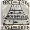Fretmate Nylon Classical String, 4th D Wound