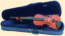 Primavera Prima 100 Violin Outfit, 4/4