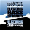 Ernie Ball 2810 5 String Bass Set Flat Wound 45-130- Image 1